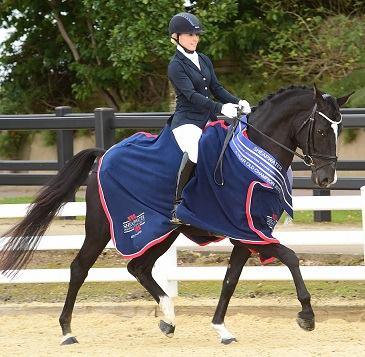 2015 Shearwater Potential International Dressage Horse champion