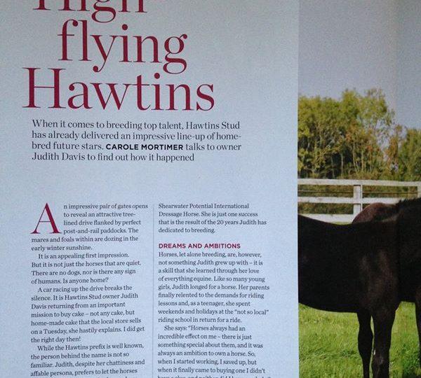 Hawtins Stud in BD magazine